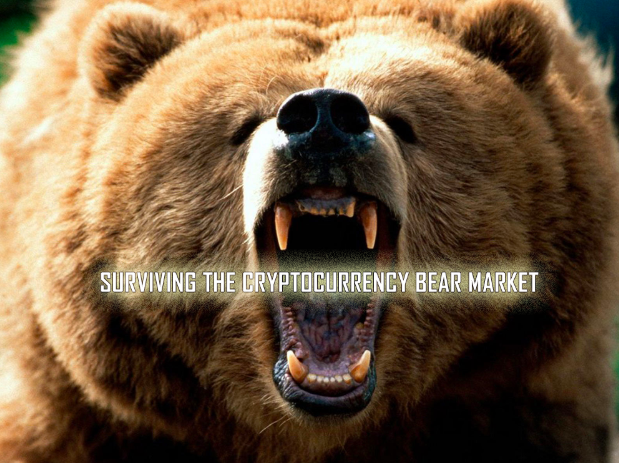 Cryptocurrency Bear Market